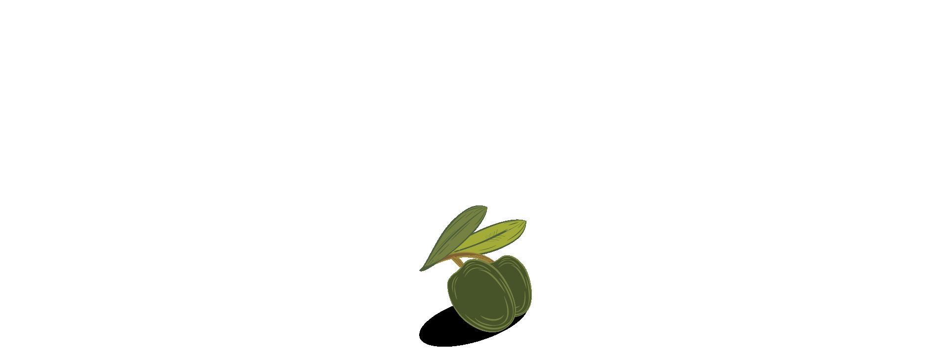 Illustrazione olive verdi per immagine principale