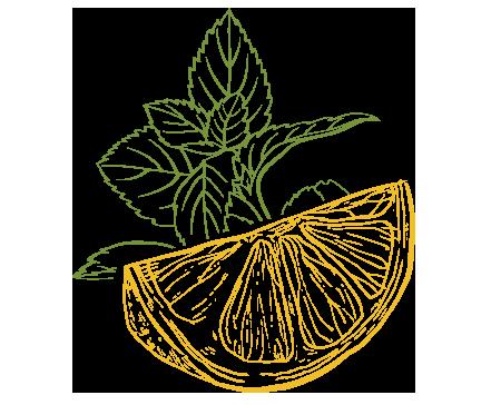 Limone illustrazione