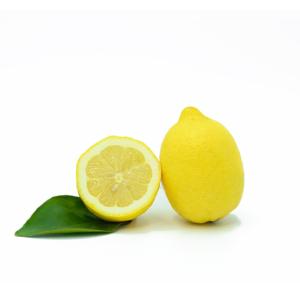 limoni siciliani con foglia