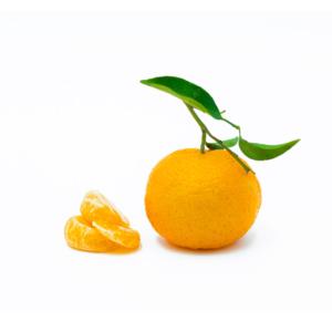 mandarini siciliani con foglia