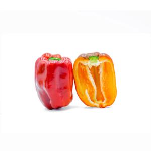 peperoni gialli e rossi freschi dalla Sicilia